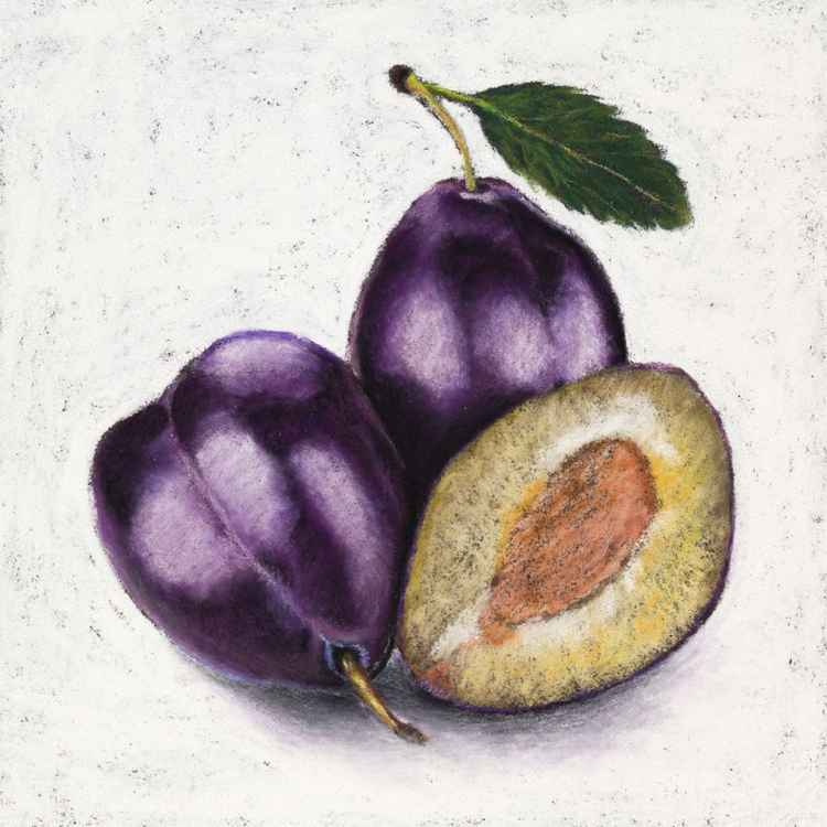 "Original pastel drawing ""Plums"" -"