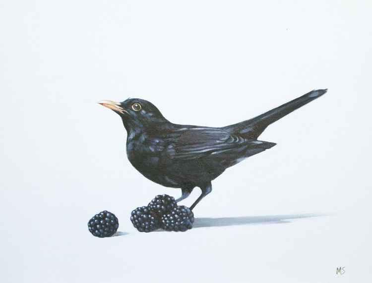 Blackberrybird -