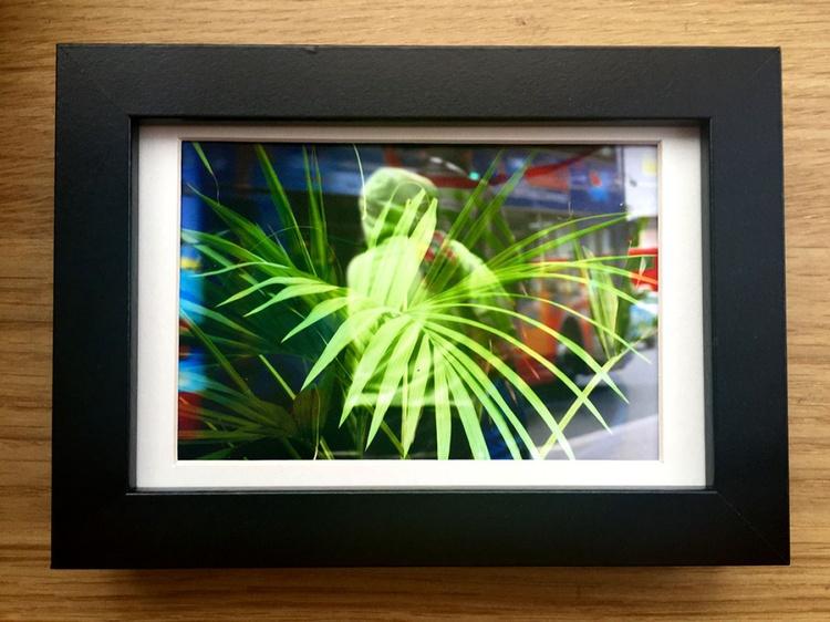 PLANT BACK MINI ART 1/200 - Image 0