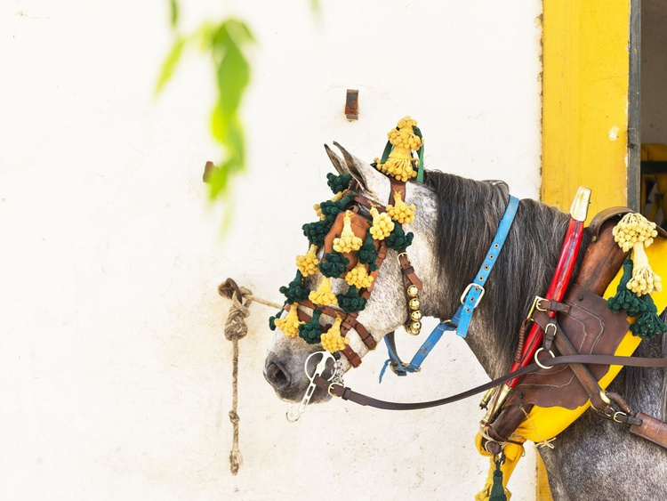 DECORATED HORSE - Image 0