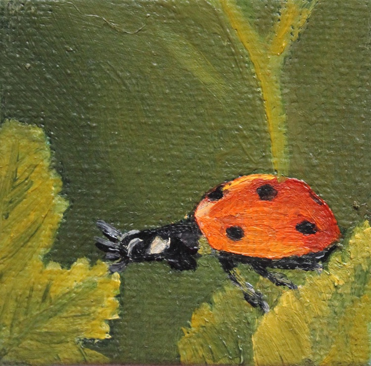 Ladybird Stretching between Two Leaves - Image 0