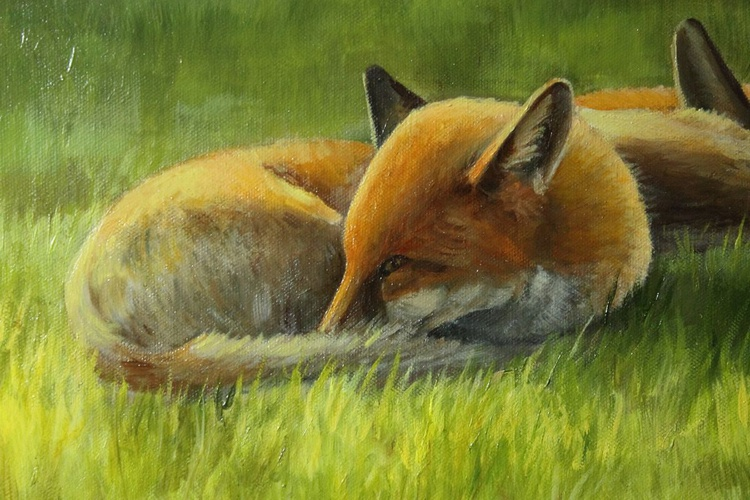 Foxes in the Sun Vol 3 - Image 0