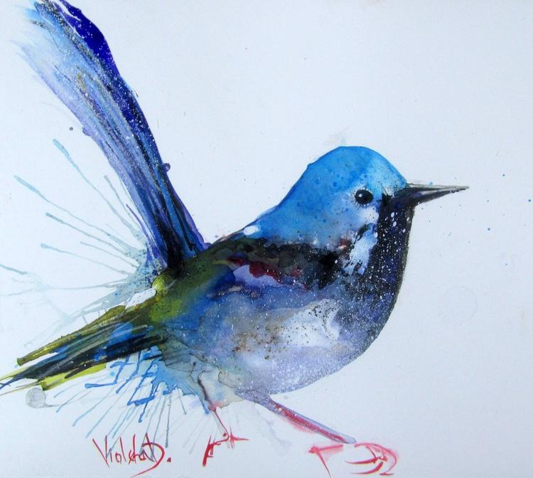 The Splendid Fairywren (Maurus splendens) - Image 0