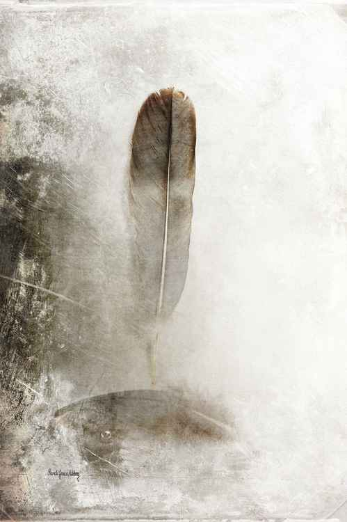 Feathers in Balance -