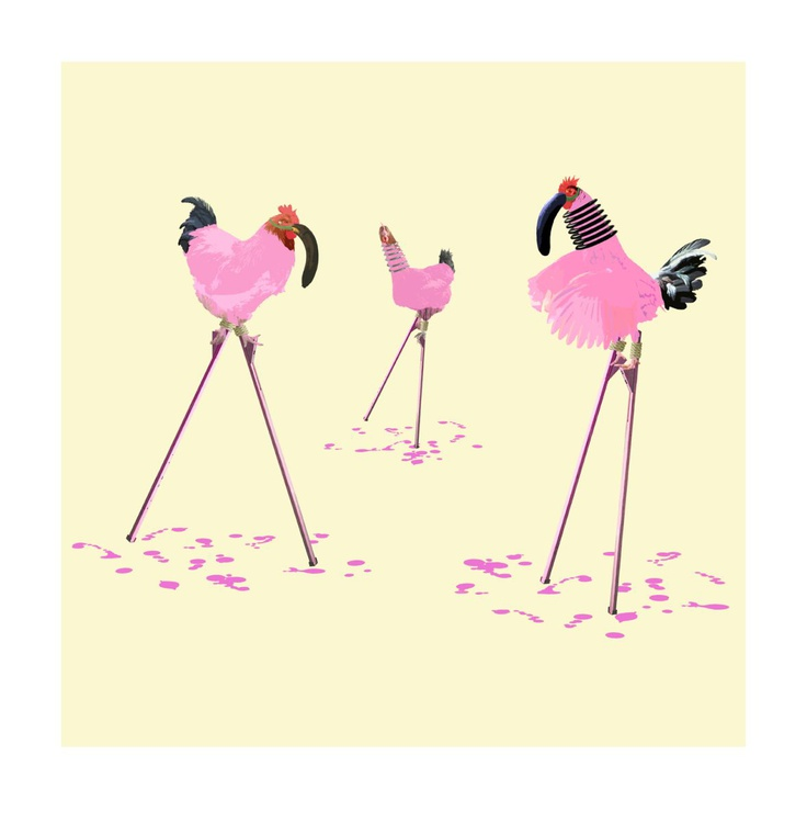 The Chickens Who Wanted to be Flamingos - Image 0