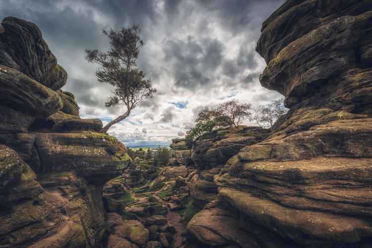 Brimham rocks in the Yorkshire dales England UK -