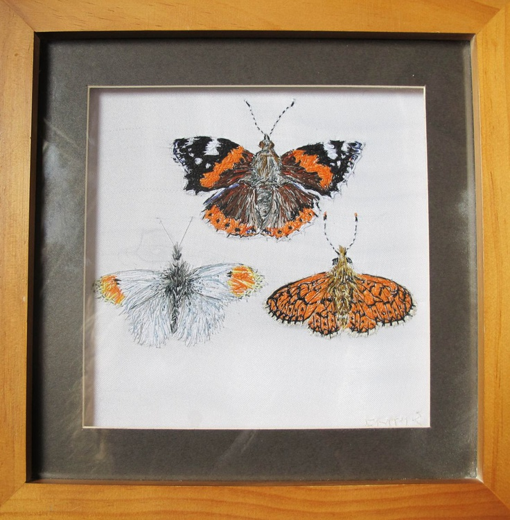 Trio of Butterflies (Red Admiral, Orange Tip & Small Pearl Bordered Fritillary) - Image 0