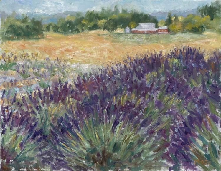 Afternoon Light/Jackson School Lavender Farm - Image 0
