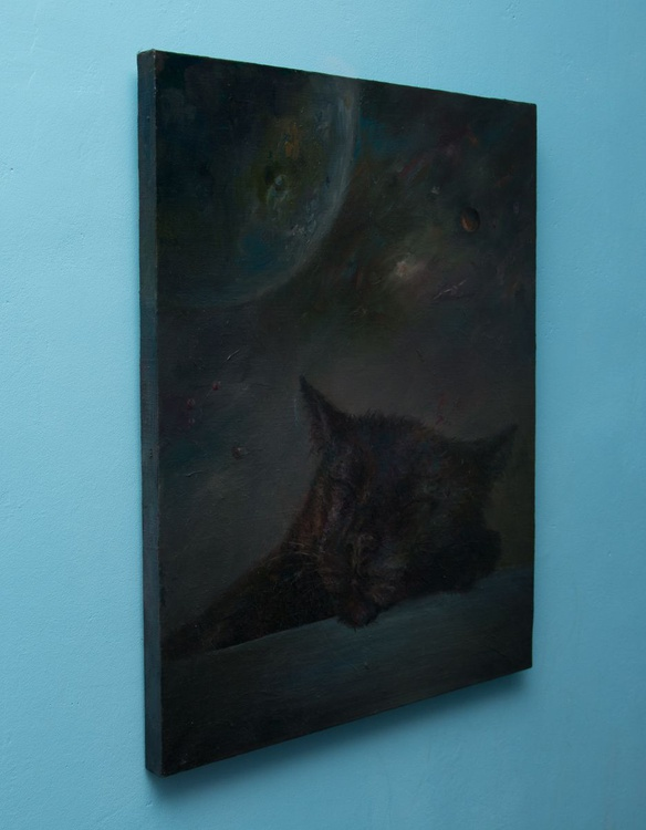Cat dreaming about space - Image 0