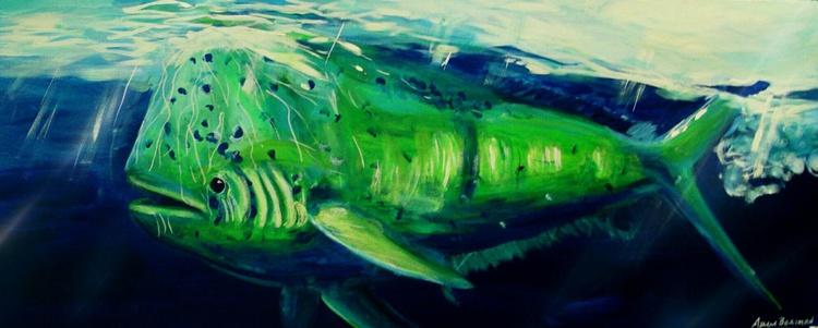 Bull Dolphin - Image 0