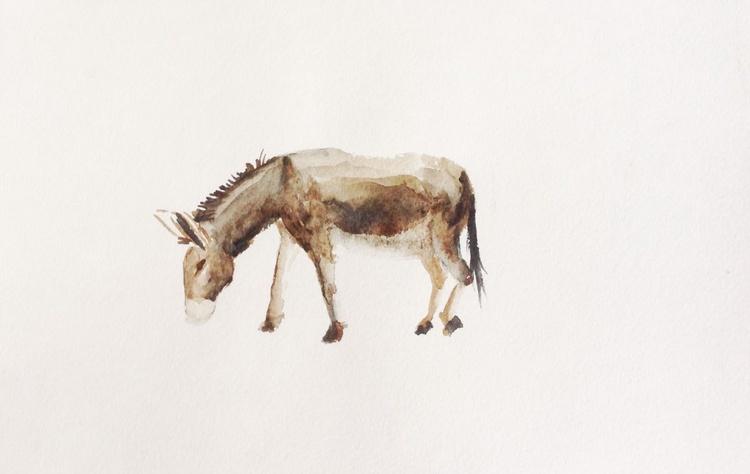 Donkey. Zoo. etude 3 - Image 0