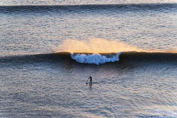 ROGUE WAVE -