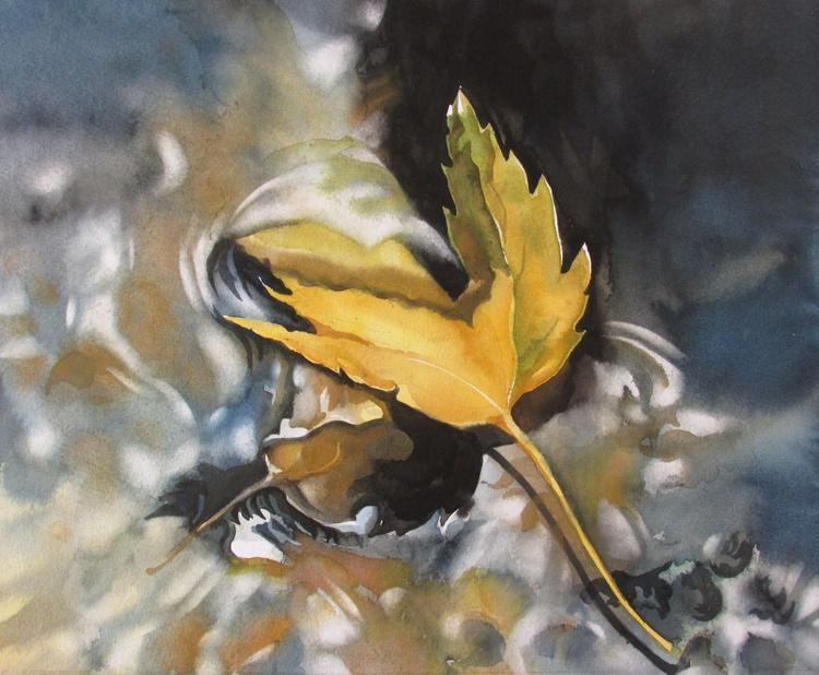 fallen leaf in water - Image 0