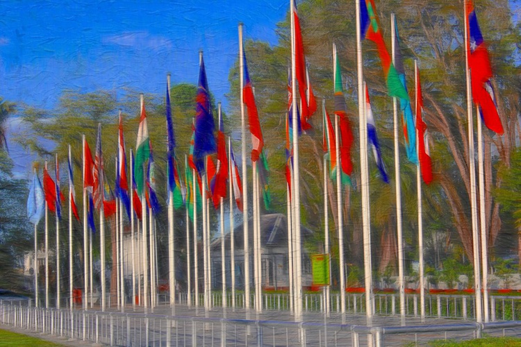 Flags - Image 0