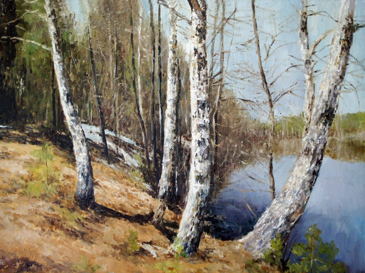 Birch Trees on the Riverbank - Image 0