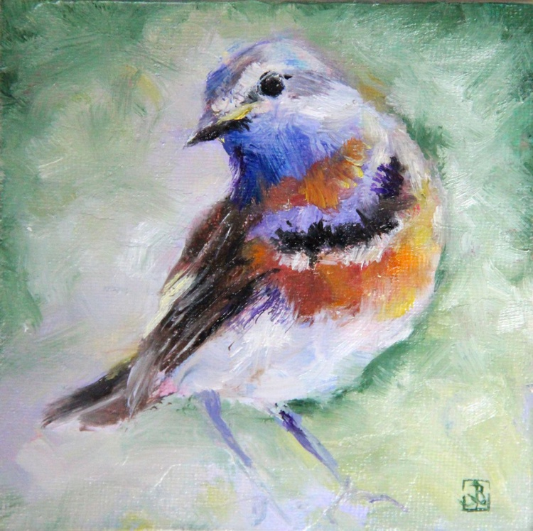 Bluethroat, Bird - Image 0