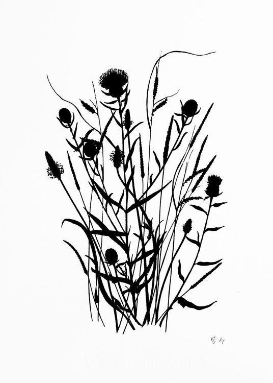 Wild Grass #2 (black edition) - Image 0
