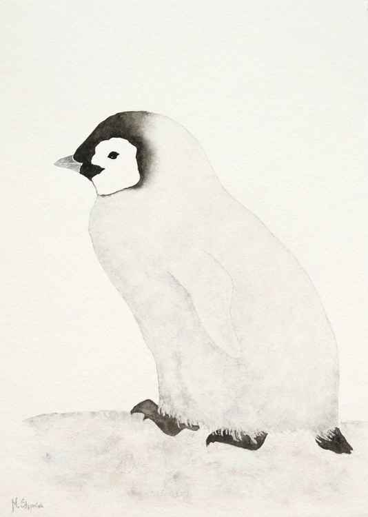 Emperor penguin chick -