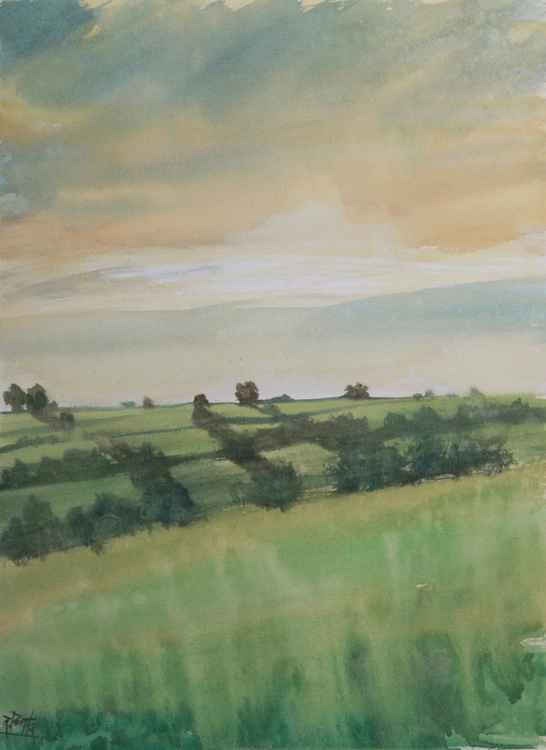 Devon countryside ( near Modbury )