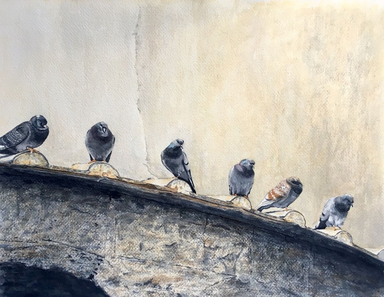 Pigeons on a roof - Image 0