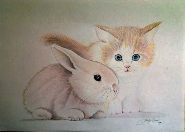 CAT AND RABBIT
