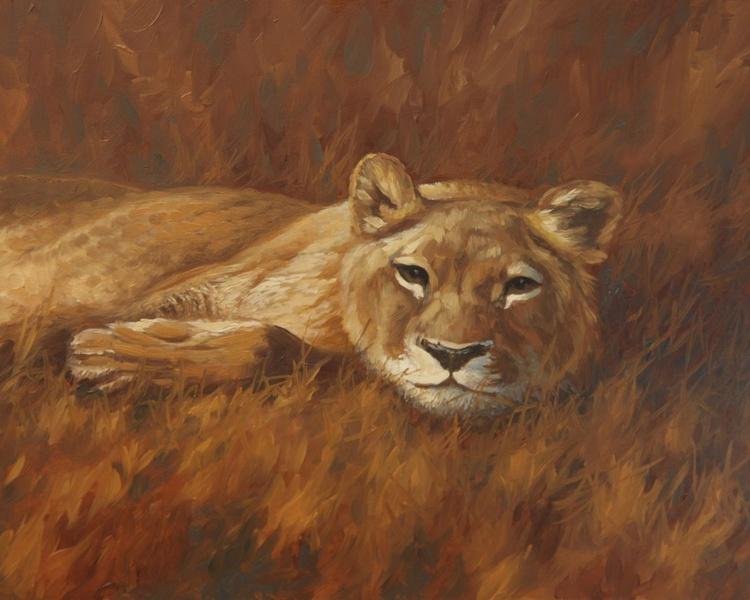 Lazy Lion - Image 0