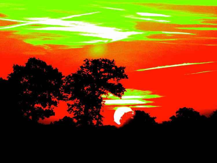 RADICAL SUNRISE