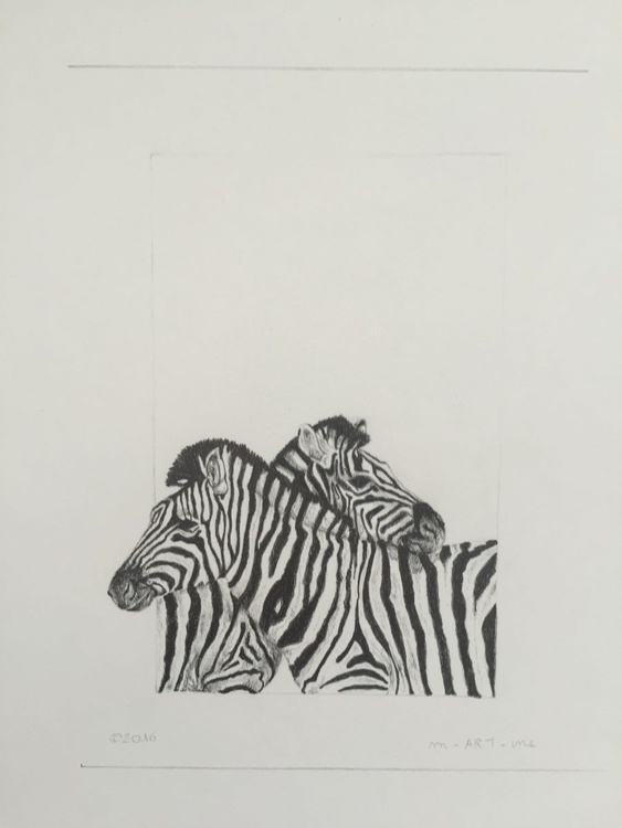 Zebra's - Image 0