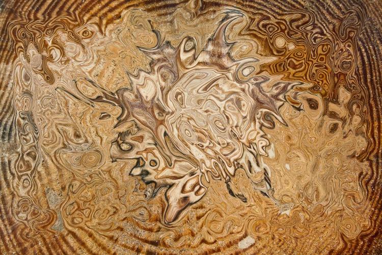 total brown - Image 0