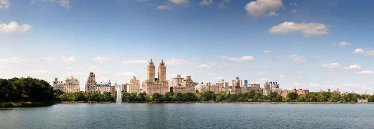 Central Park NYC (109x40cm) - Image 0