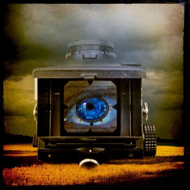 Eye of the Beholder - Image 0