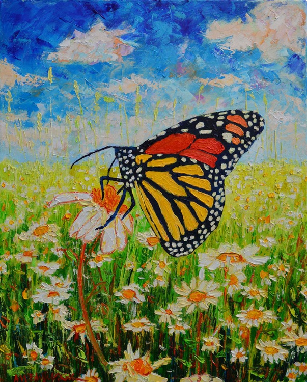 ROYAL MONARCH BUTTERFLY IN DAISIES FIELD - Image 0
