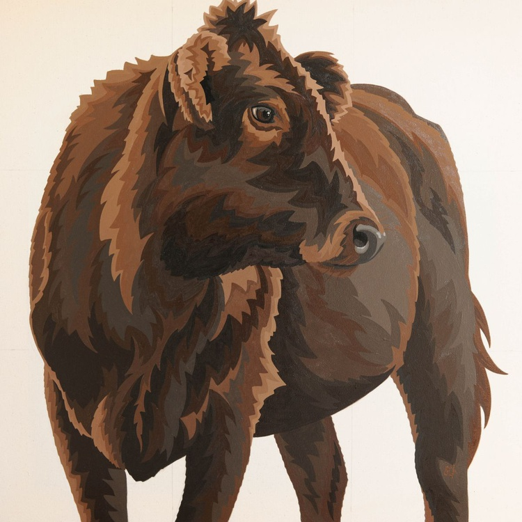 Brown Cow - Image 0