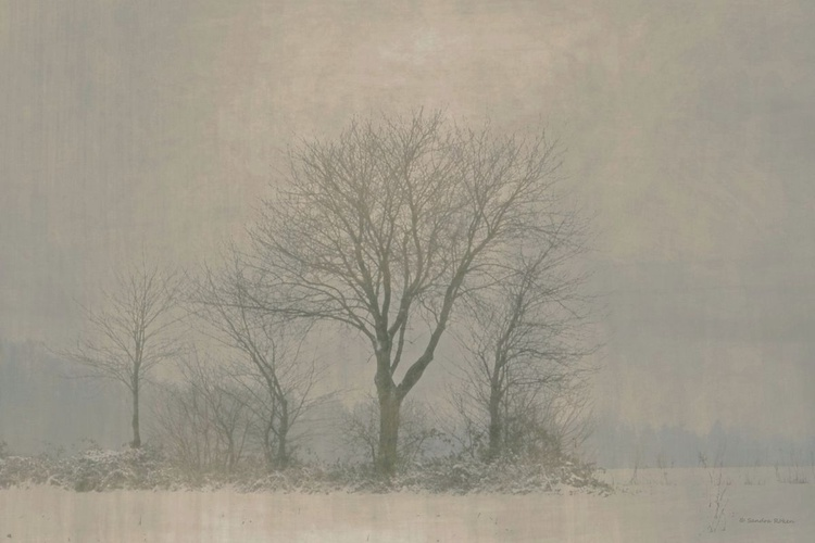 Cold Silence - Image 0