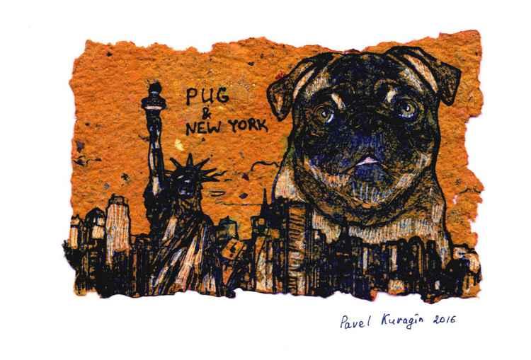 Pug and New York -