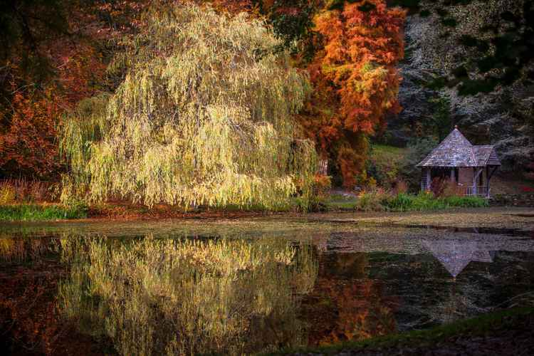 The colours of an English Autumn -