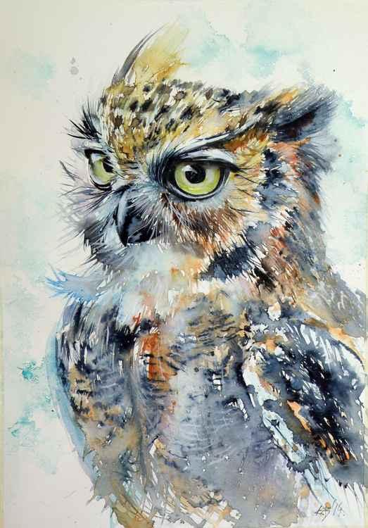 Owl -