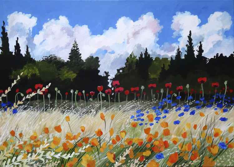 Poppies And Cornflower -