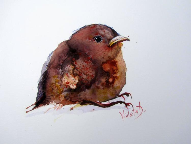 A Baby Wren - Image 0