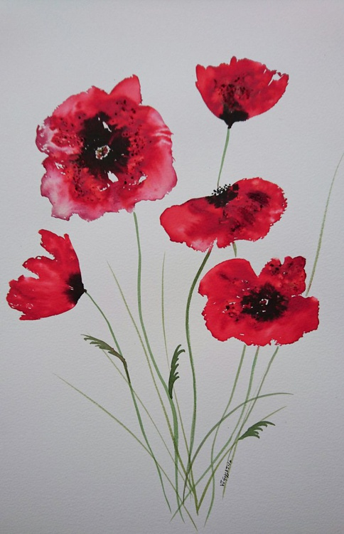 "Bright RED poppies 16""x12"" - Image 0"