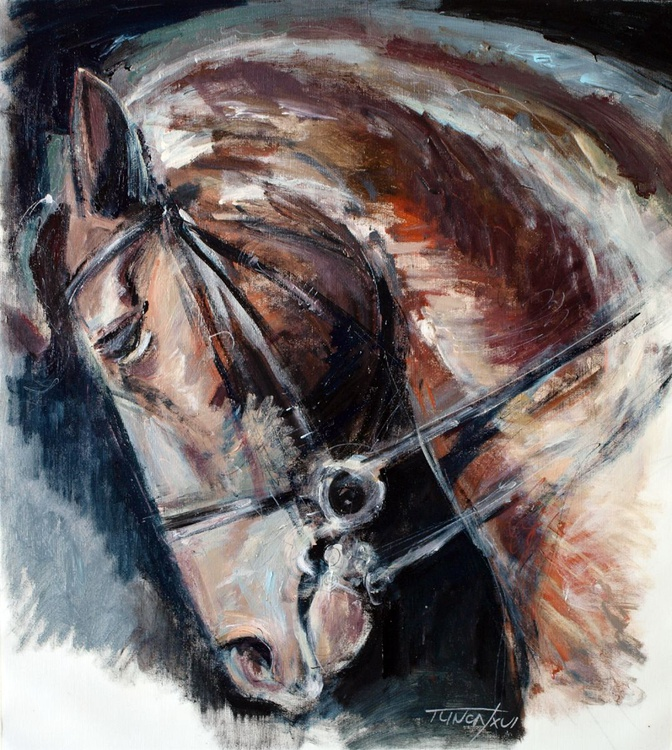horse head study - Image 0