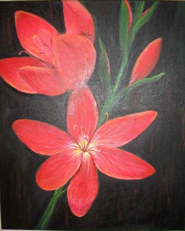 Red Flower -