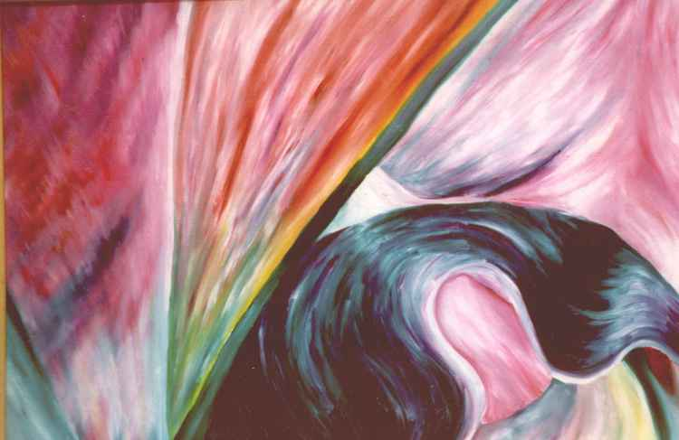 Rainbow Lily -