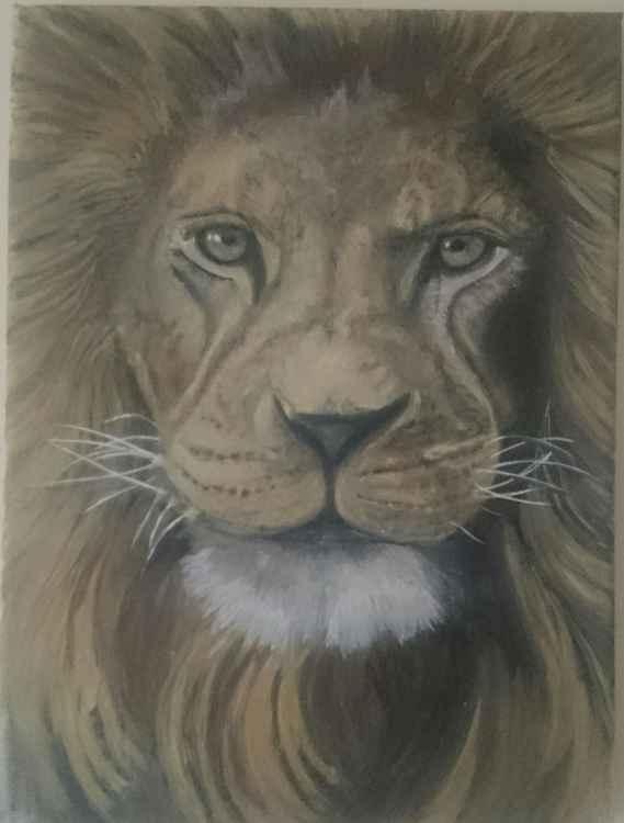 'Lion' -