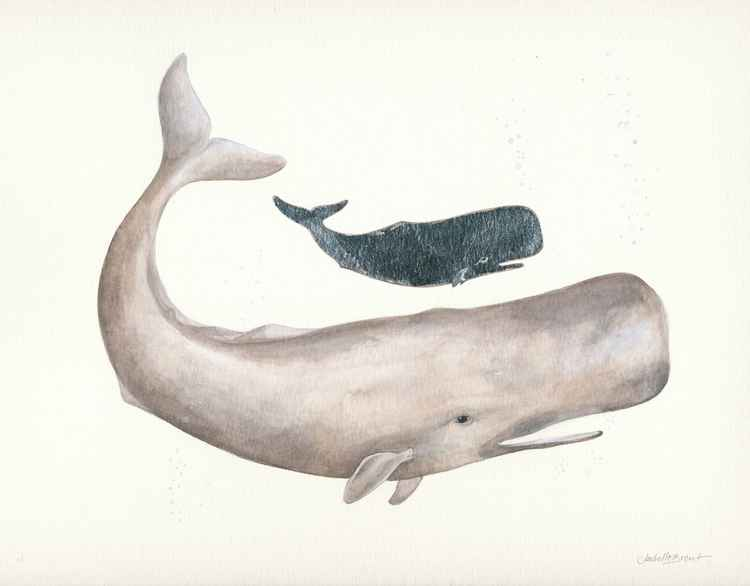 Whale and Calf -