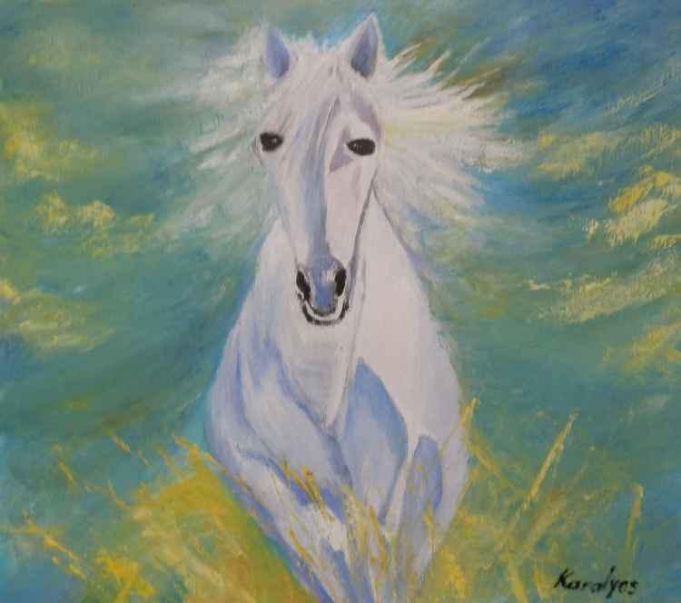Gallop -