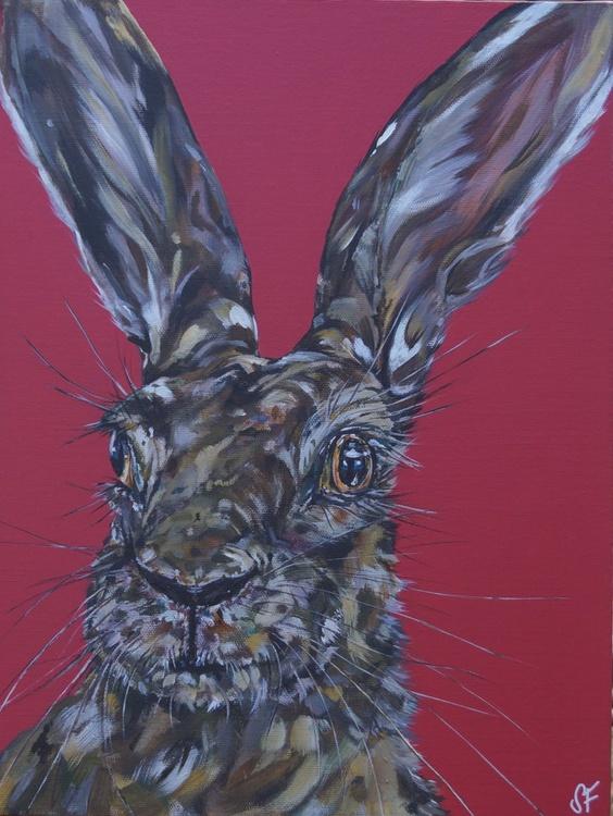 Hare We Go Again - Image 0