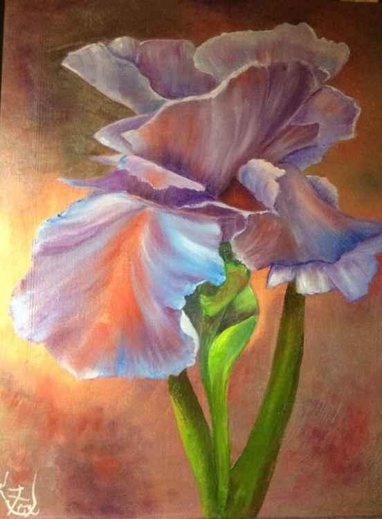 Iris in Lavender -
