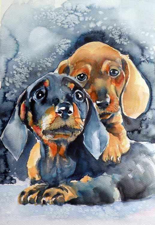 Sweet little dogs -