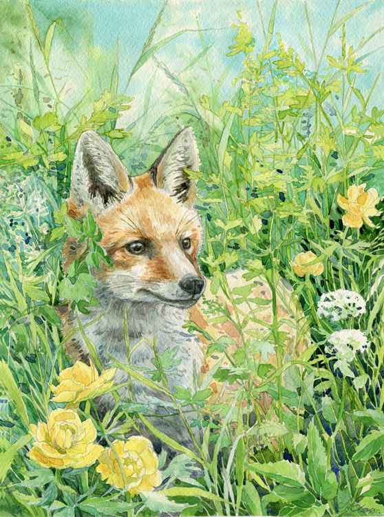 "ORIGINAL WATERCOLOR ""Young fox"" -"